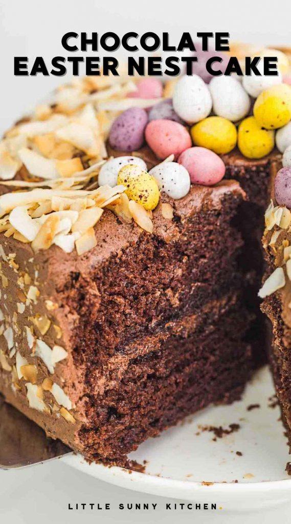 Chocolate Easter Nest Cake pinnable image