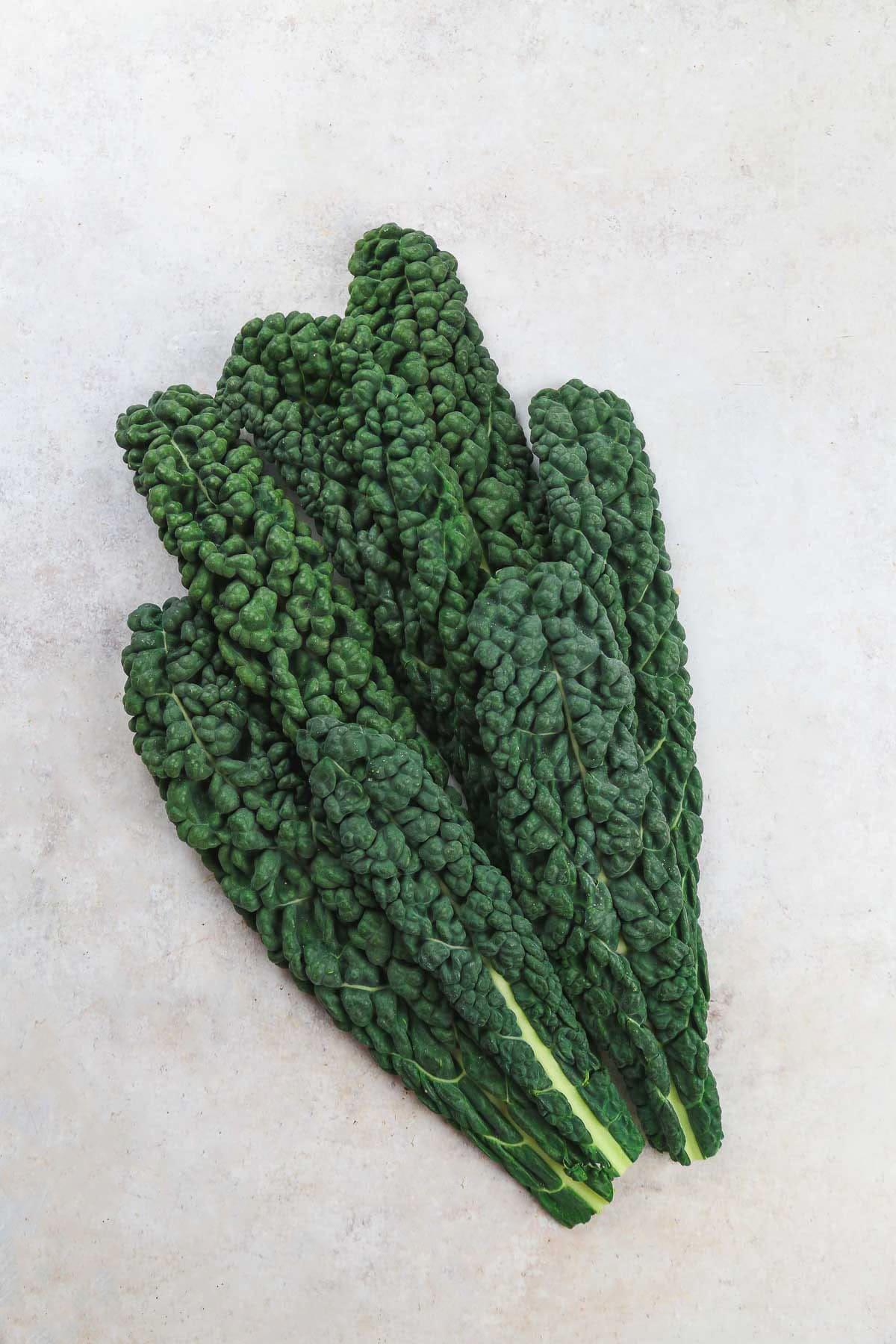 Fresh cavolo nero black kale