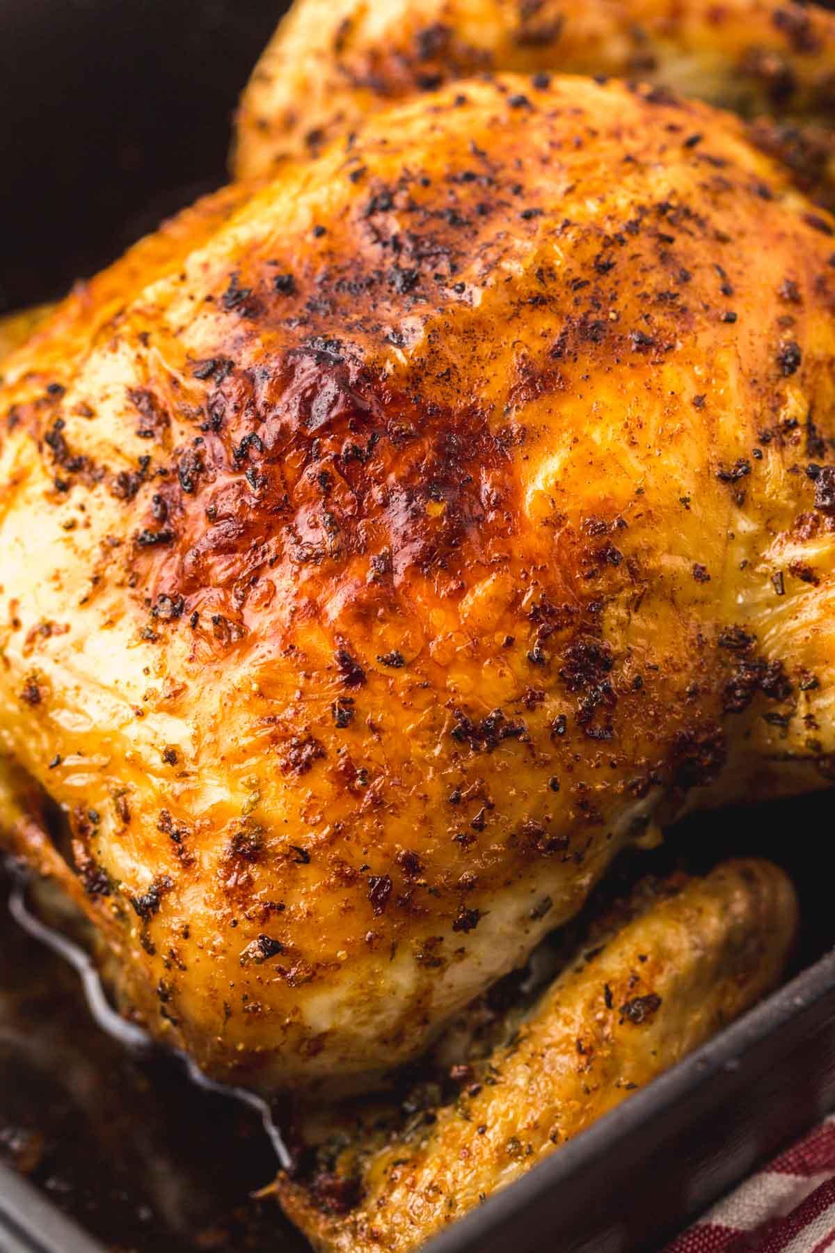 Close up of crispy golden roast chicken skin.