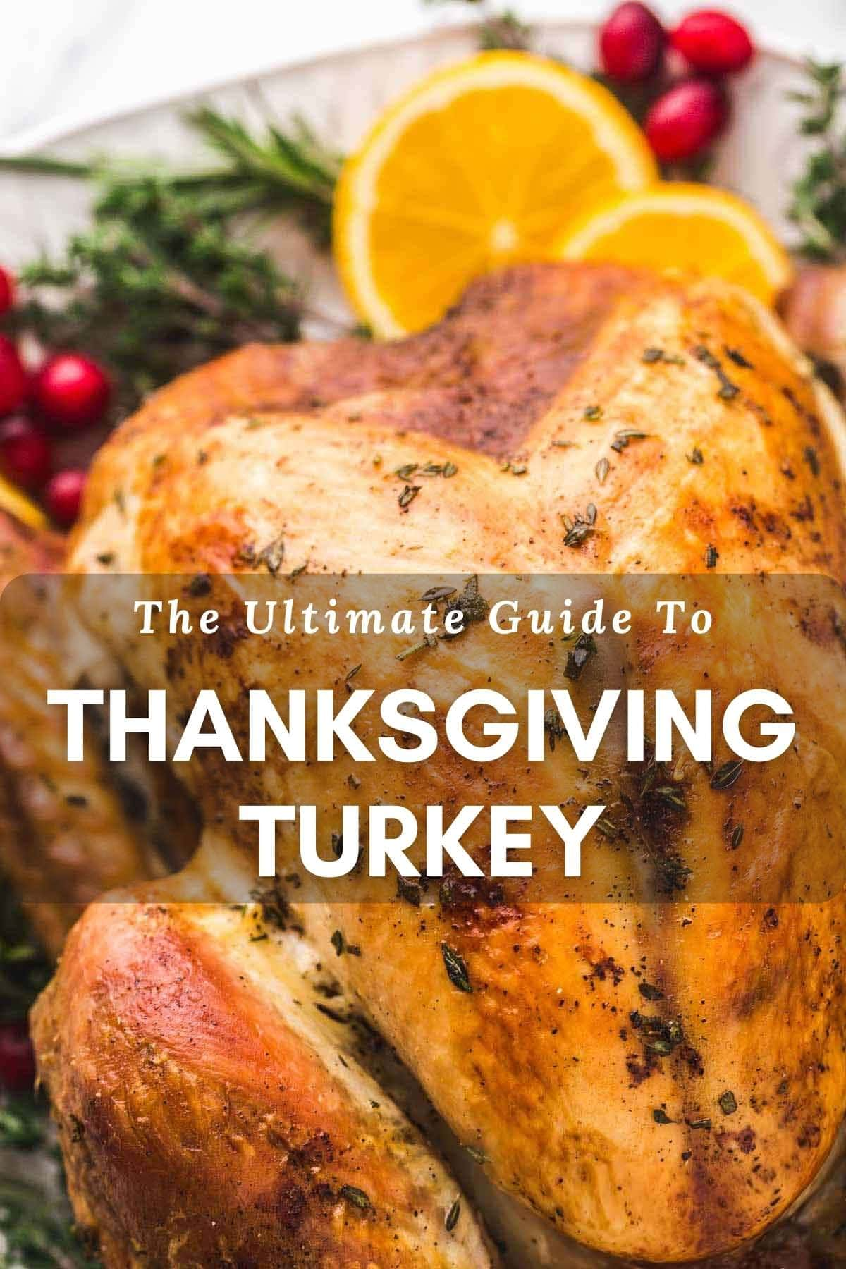 "Close up of roasted turkey with text overlay ""The Ultimate Guide to Thanksgiving Turkey"""