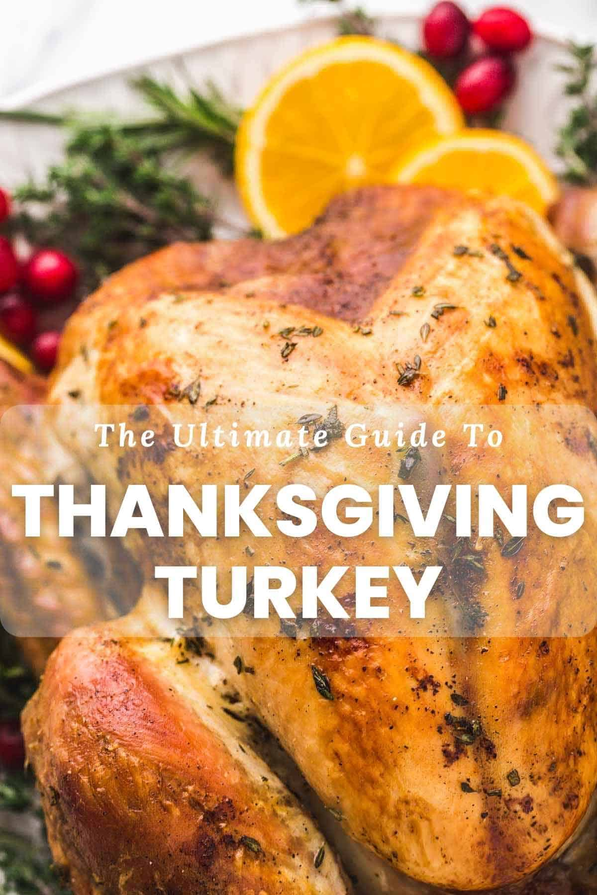 """Close up of roasted turkey with text overlay """"The Ultimate Guide to Thanksgiving Turkey"""""""