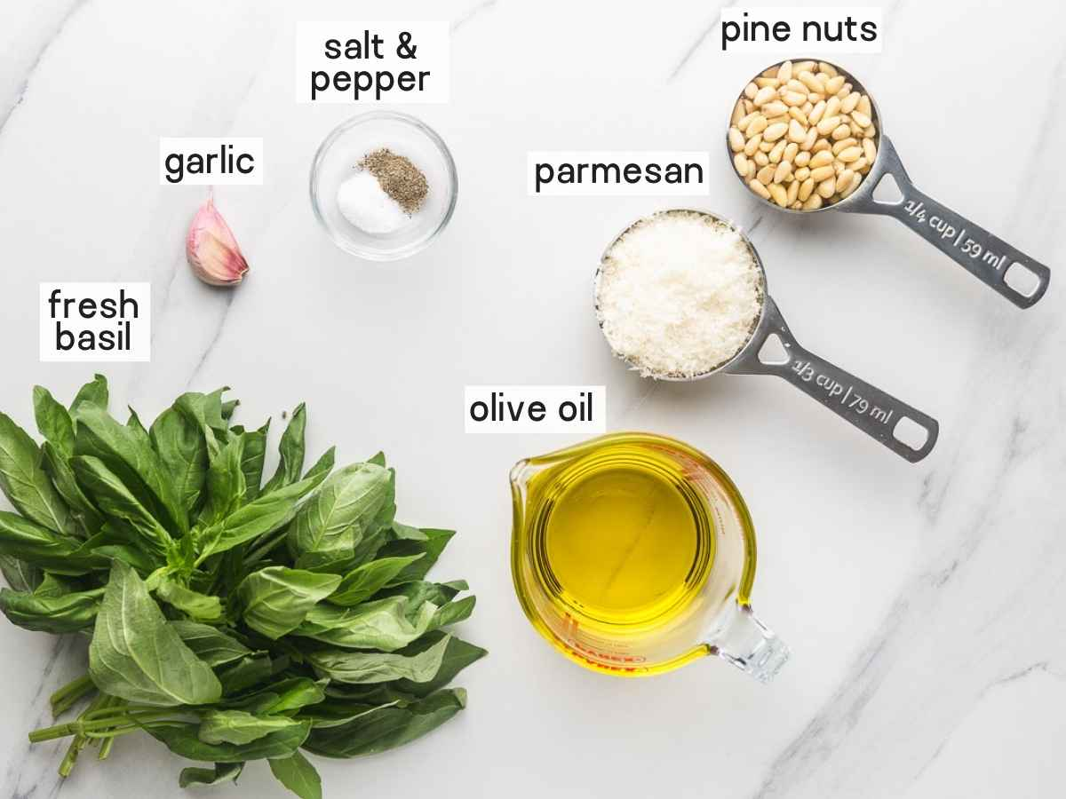 Ingredients needed to make basil pesto sauce
