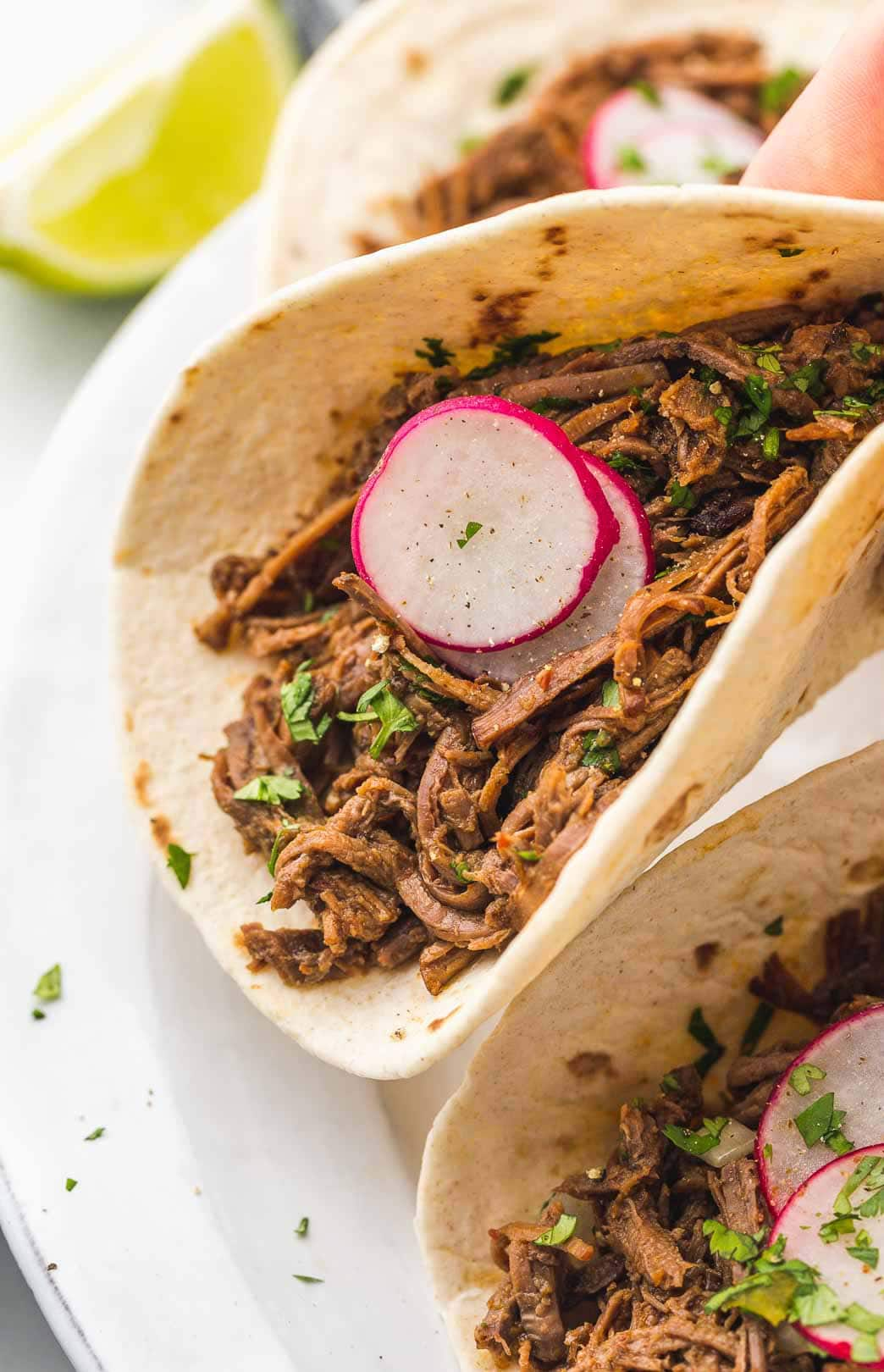 Barbacoa beef in a taco, garnished with cilantro and radishes