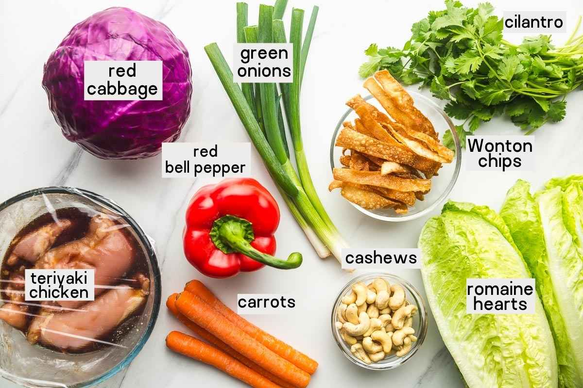 Ingredients needed to make Asian chicken salad including marinated chicken, red cabbage, romaine lettuce, green onions, bell pepper, carrots, cilantro, wonton chips, and cashews.