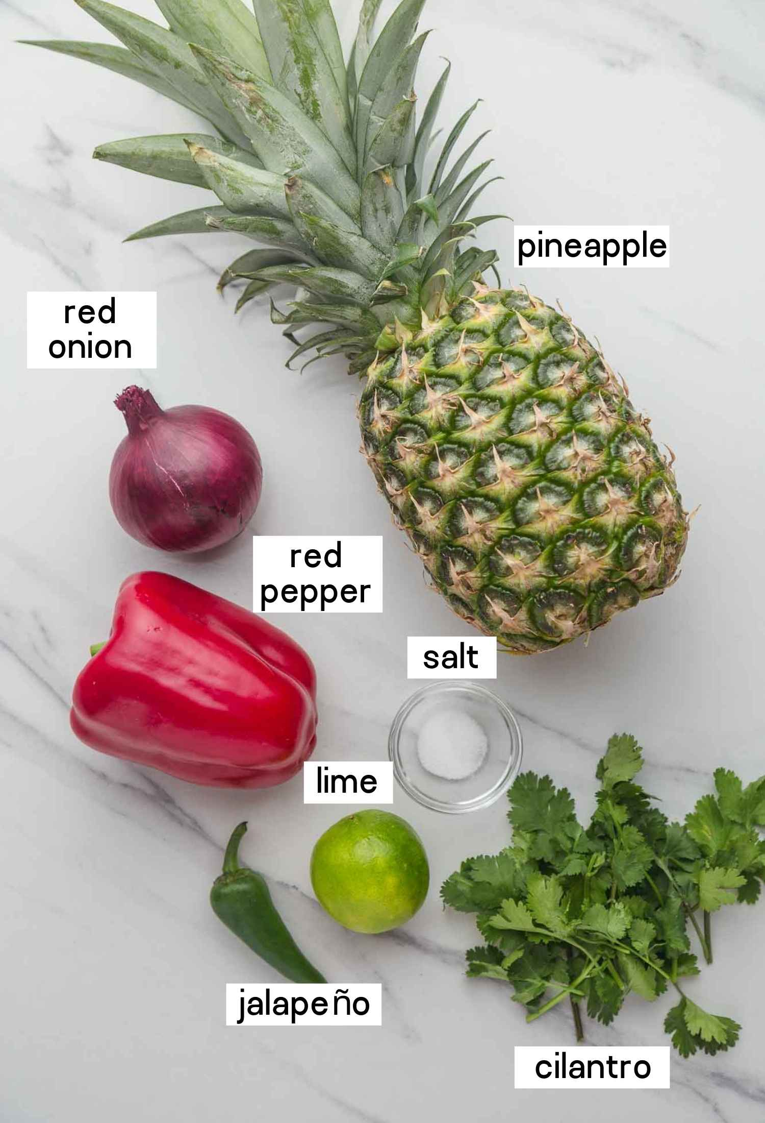 Ingredients needed to make pineapple salsa: pineapple, red pepper, red onion, cilantro, jalapeño, lime, and salt.