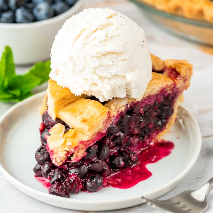 A slice of blueberry pie served on a small white plate with vanilla ice cream