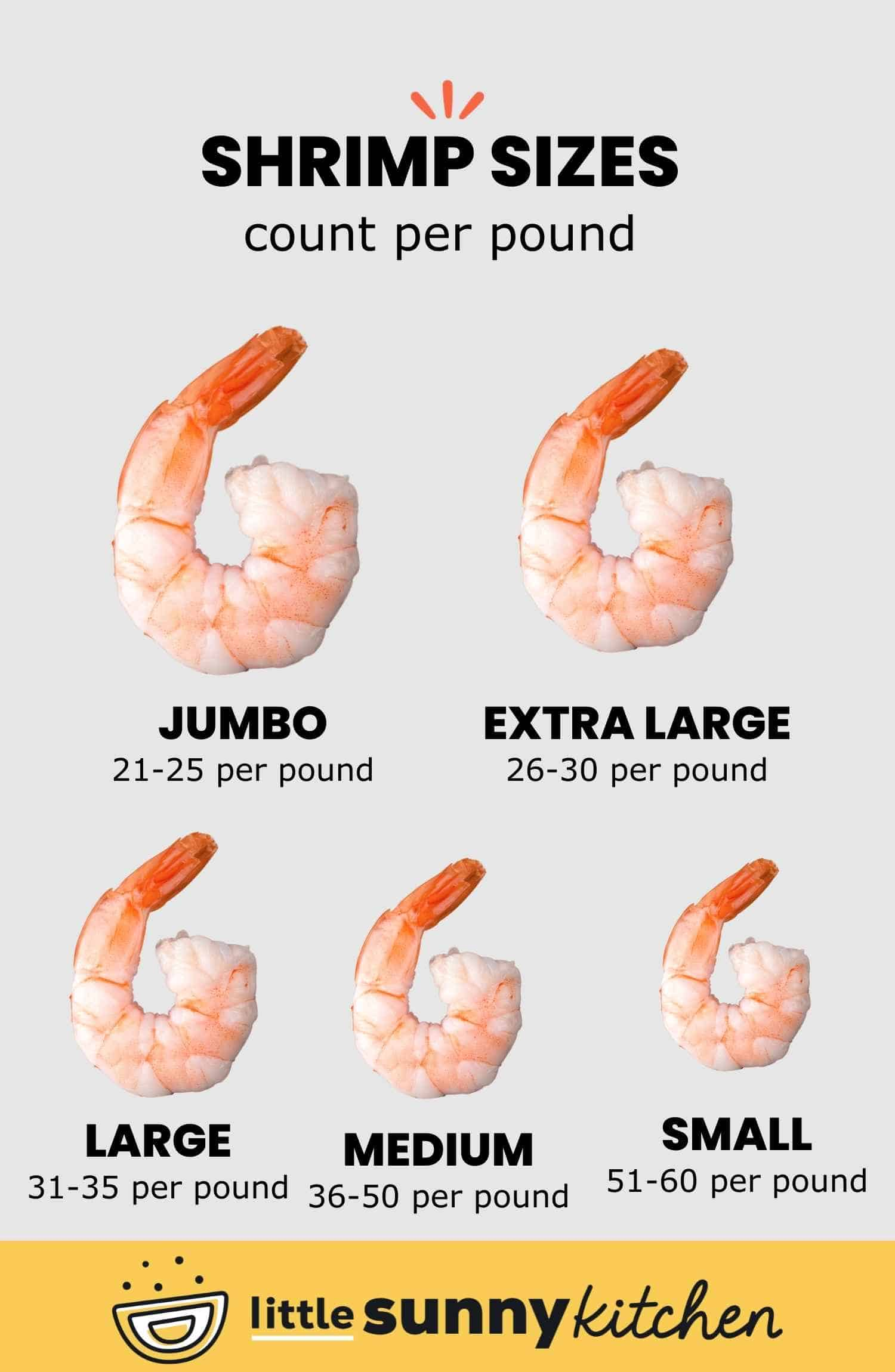 Shrimp sizes count per pound including jumbo, extra large, large, medium, and small.