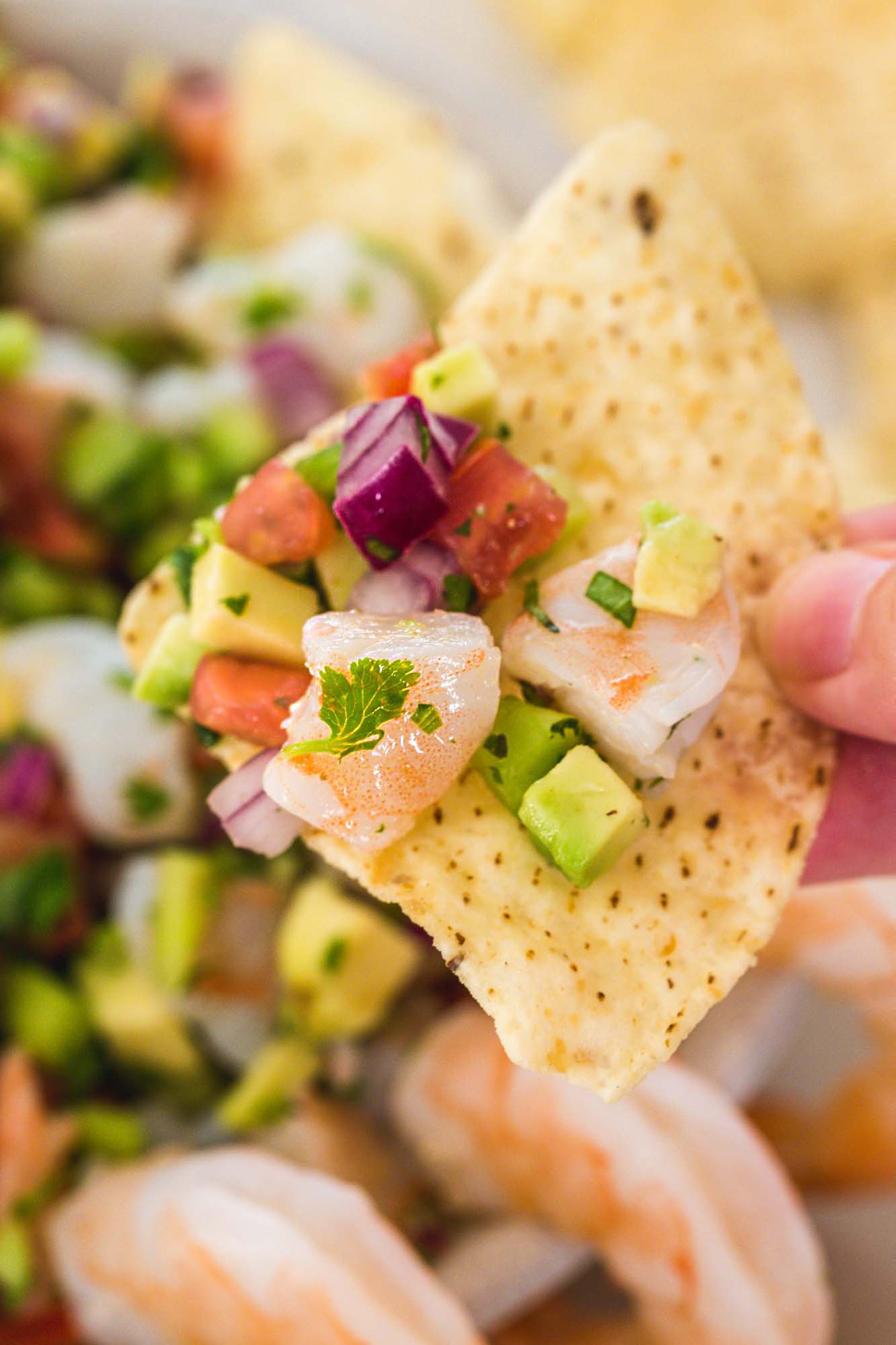 A close up shot of shrimp ceviche being enjoyed with a corn tortilla chip