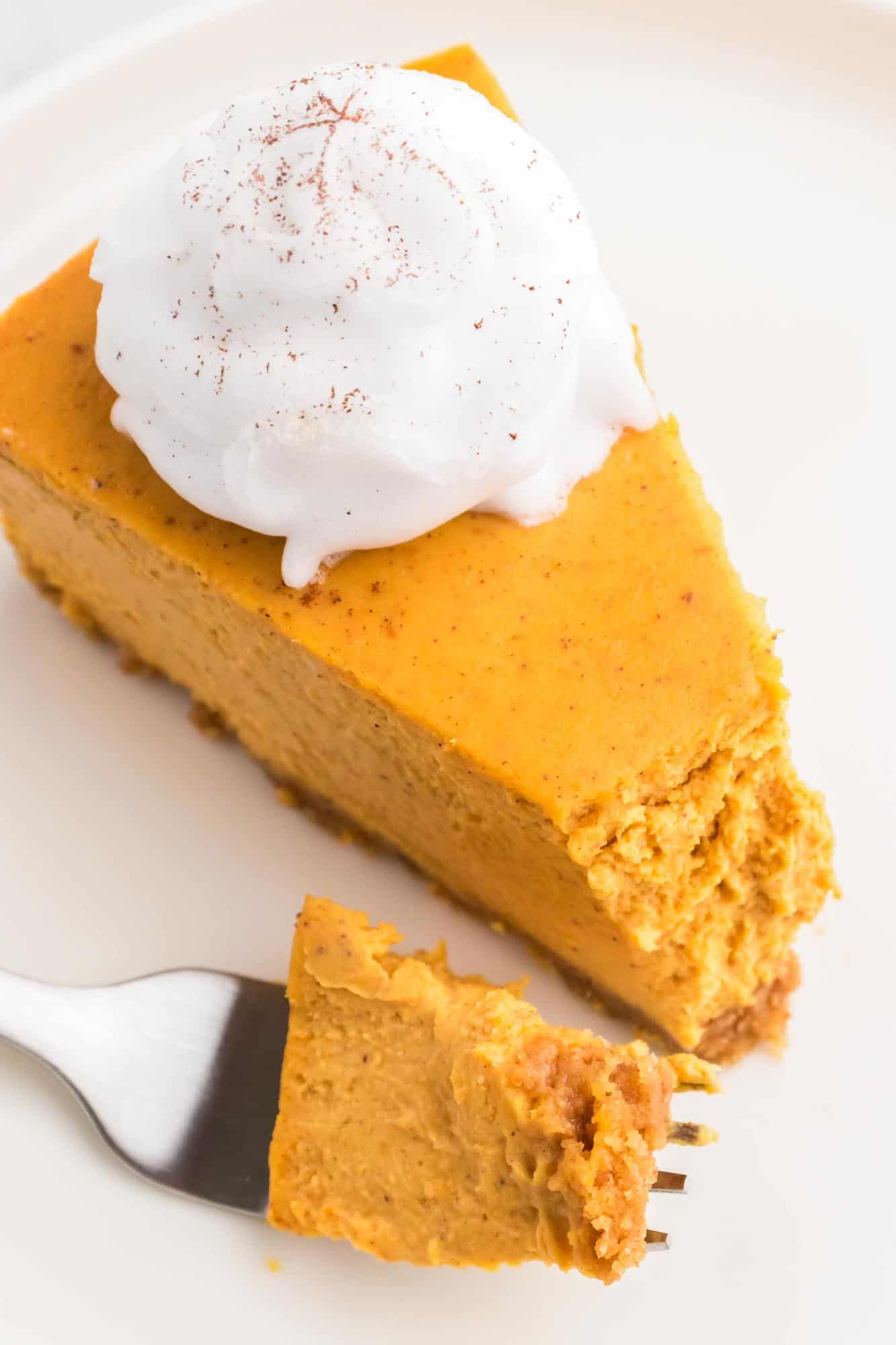 Enjoying a slice of pumpkin cheesecake with a fork