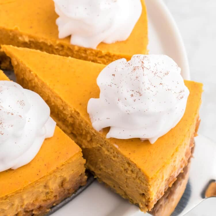 Taking a slice of pumpkin cheesecake with whipped cream