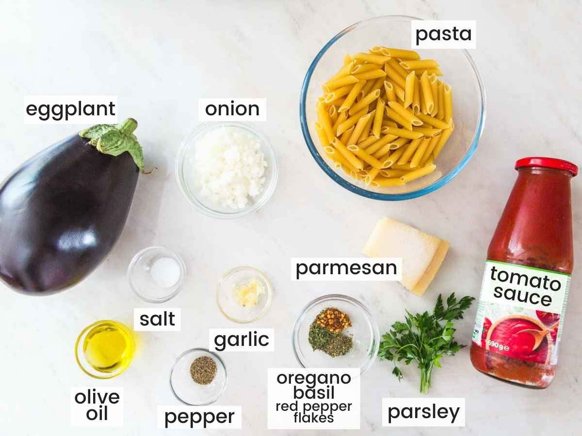 Ingredients needed to make eggplant pasta including pasta, eggplant, tomato sauce, onion, cheese, and seasonings.