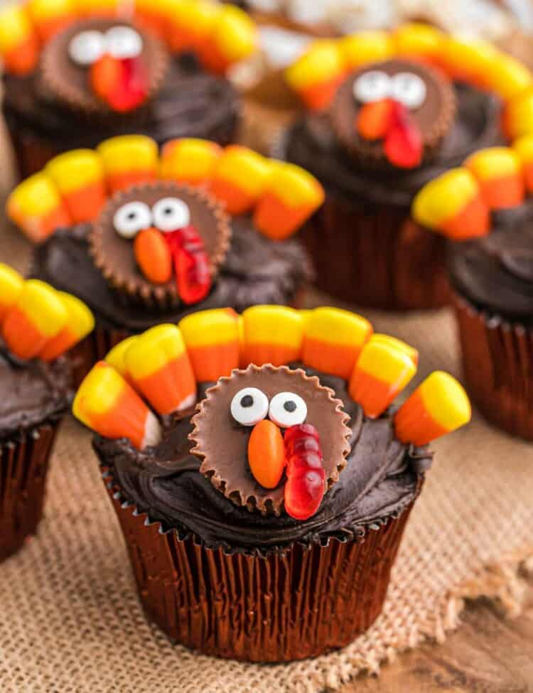 Turkey decorated chocolate cupcakes