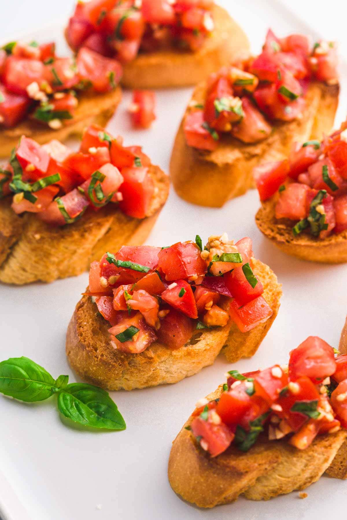 Tomato Bruschettas with fresh basil leaves