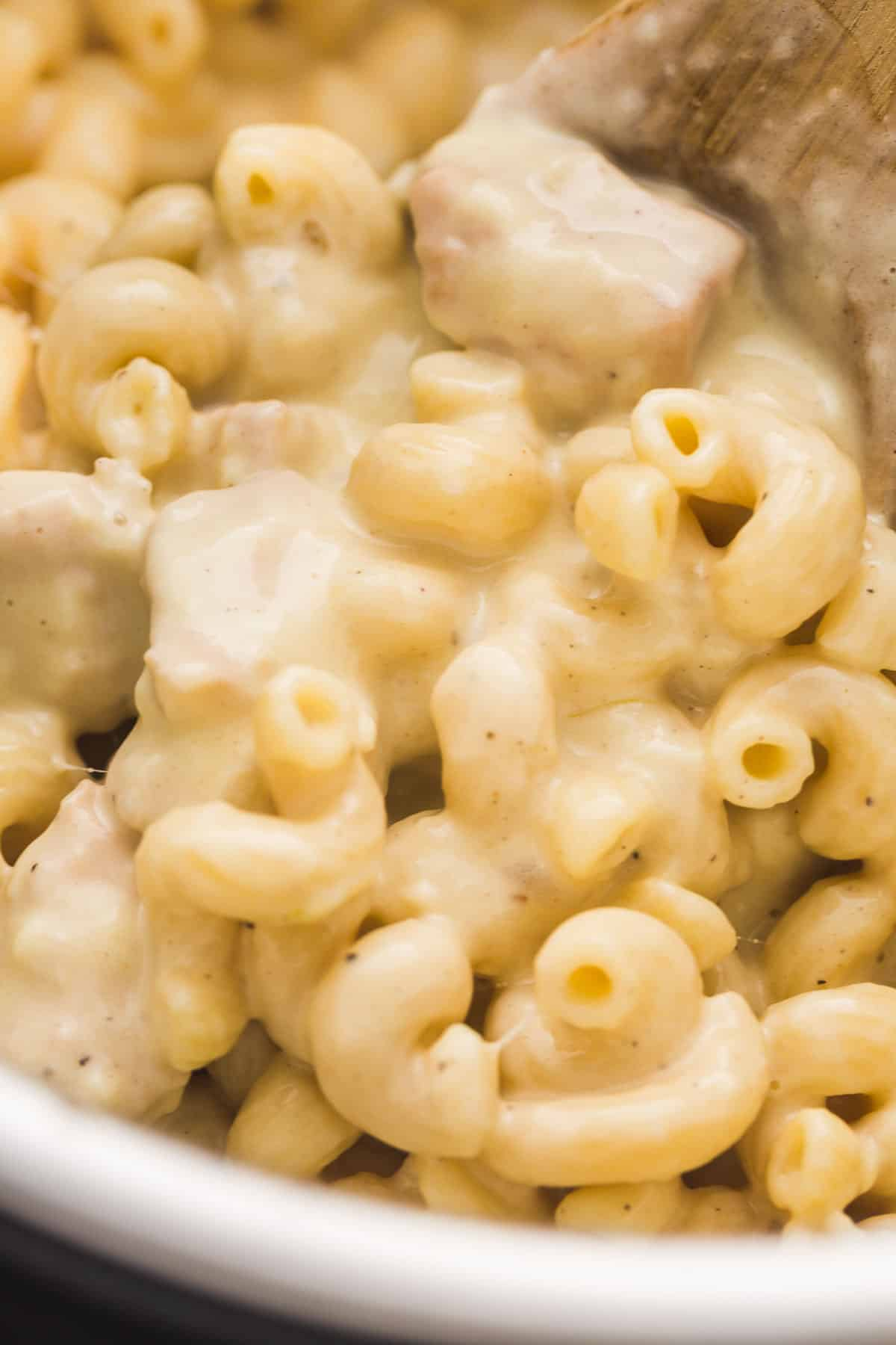 A close up shot of the chicken mac and cheese