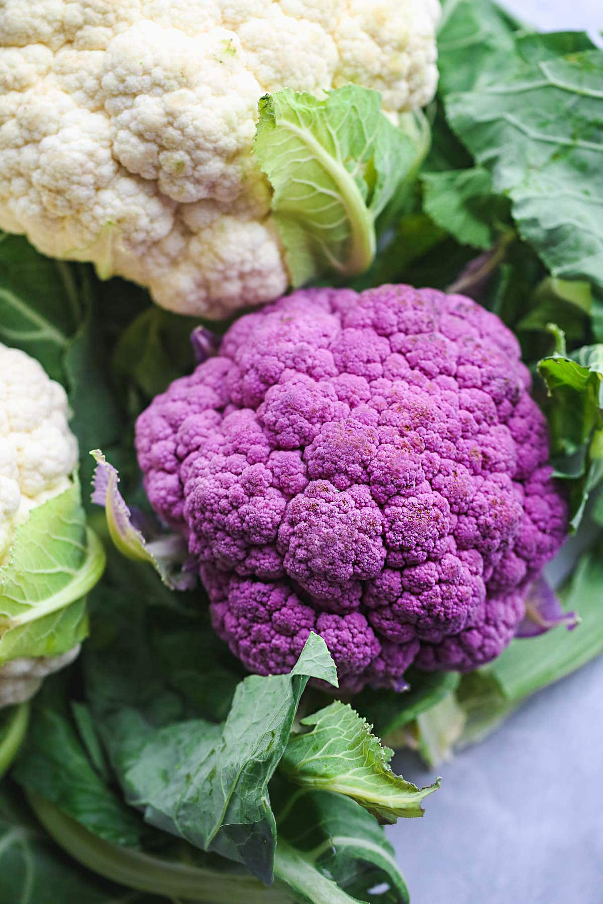 one purple cauliflower in the center and 2 white cauliflowers on the side