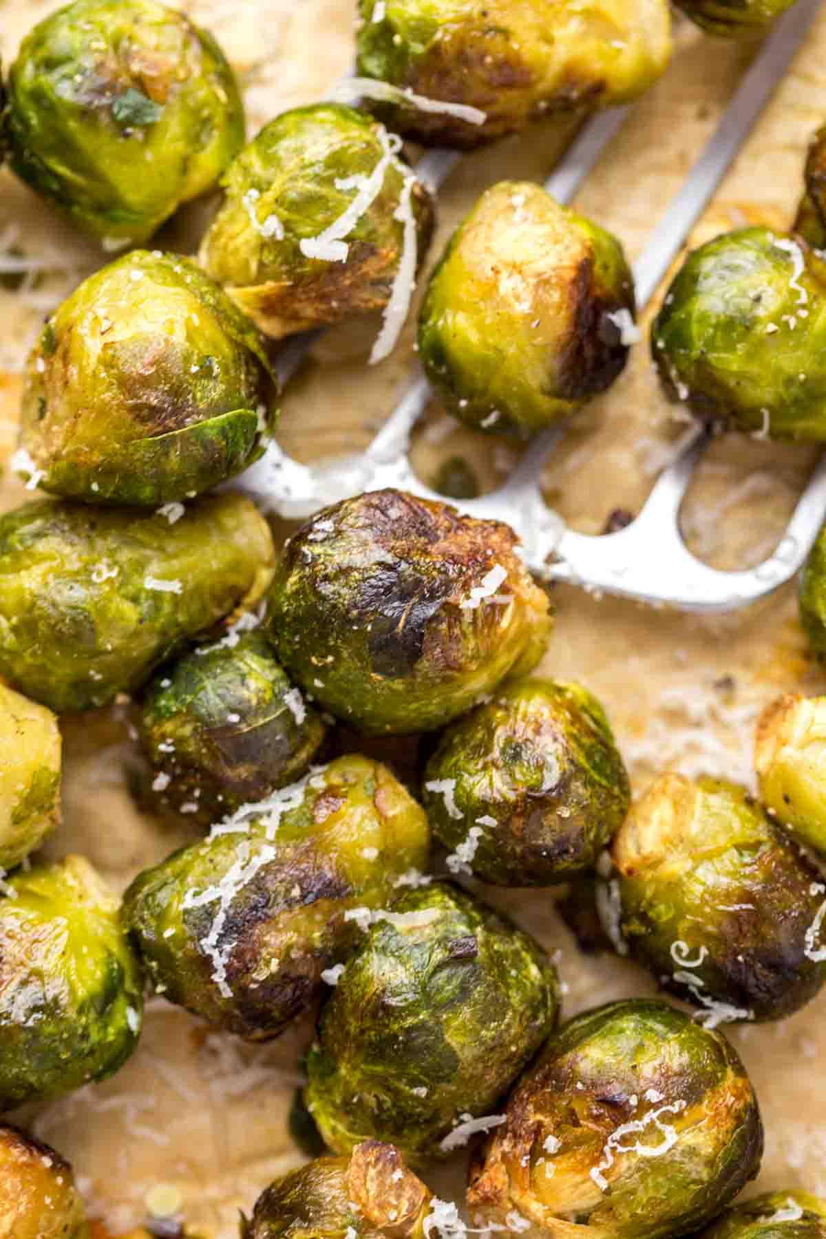 Close up of roasted brussels sprouts with parmesan flakes